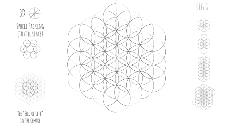Circle Fig 6 - Flower of Life