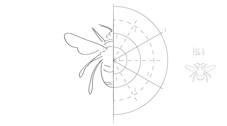 How to draw a bee Fig 6