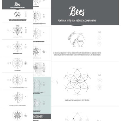 How to draw any bee Ebook