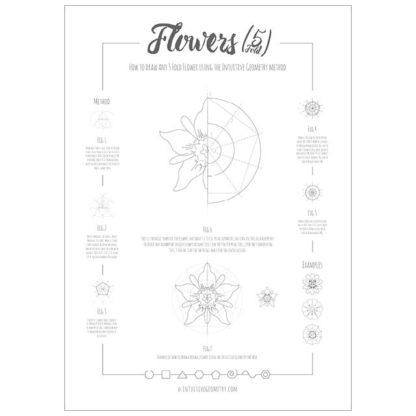 How to draw any 5 fold flower - Poster