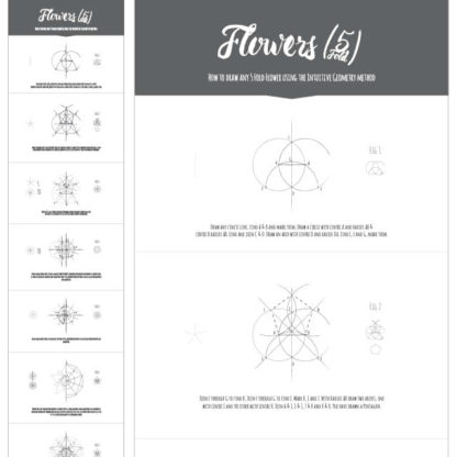 How to draw any 5 fold flower - Ebook