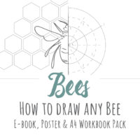 Bee Drawing Inspiration Pack
