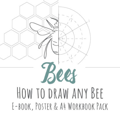 How to draw any Bee product image