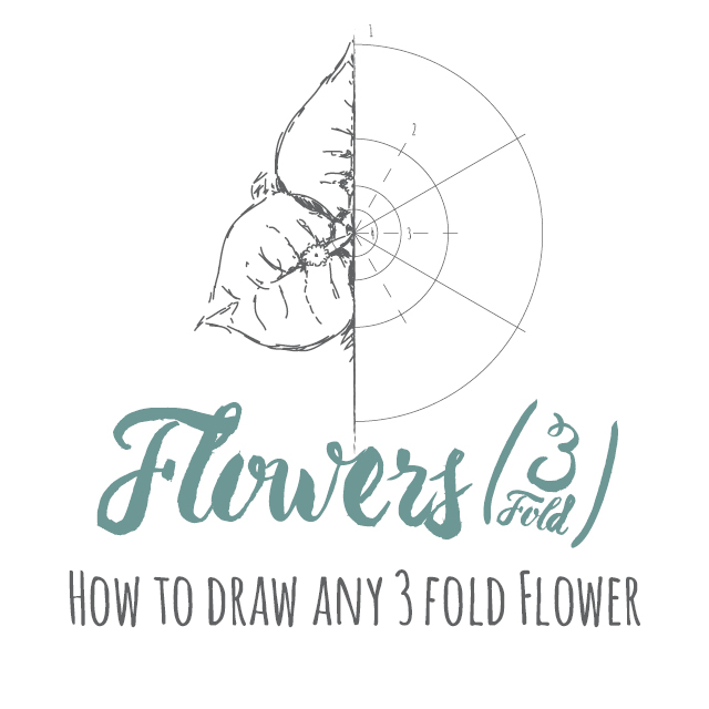 How to draw any 3 fold flower instructions
