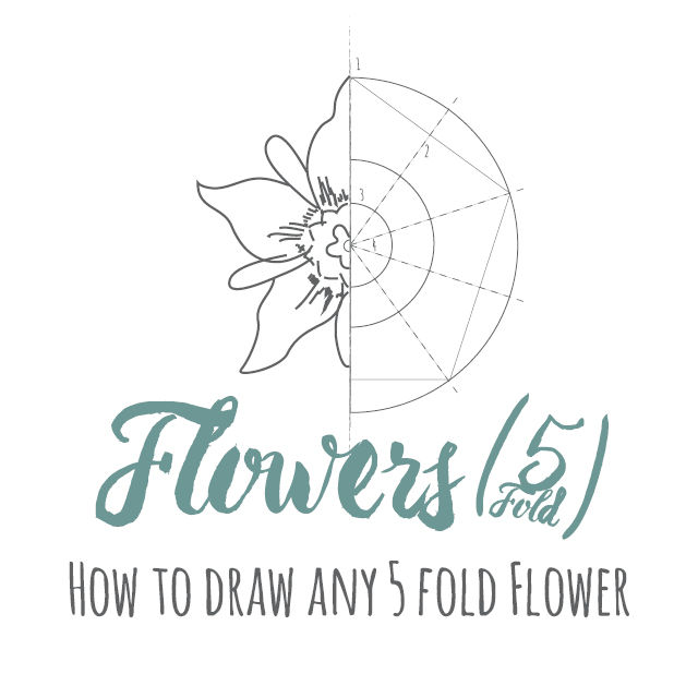 How to draw any 5 fold flower instructions link