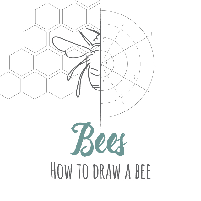 How to draw Bees instructions link