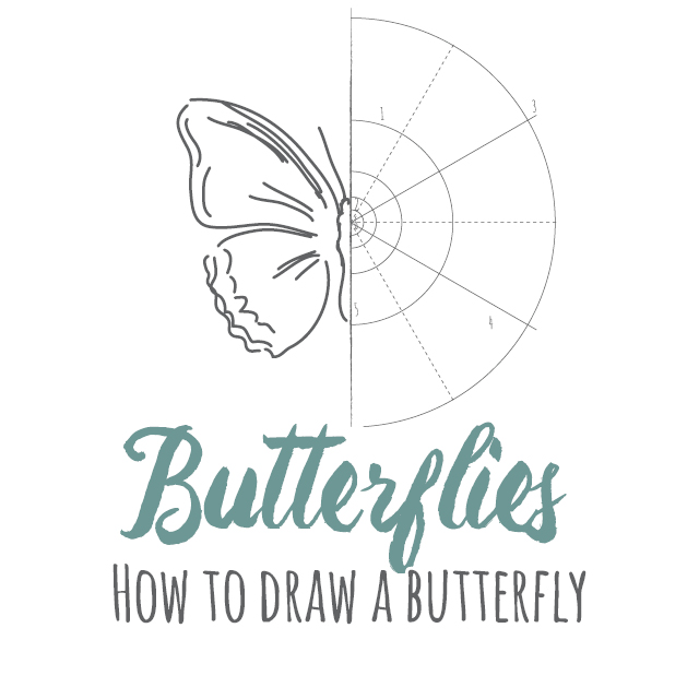 How to draw Butterflies instructions link
