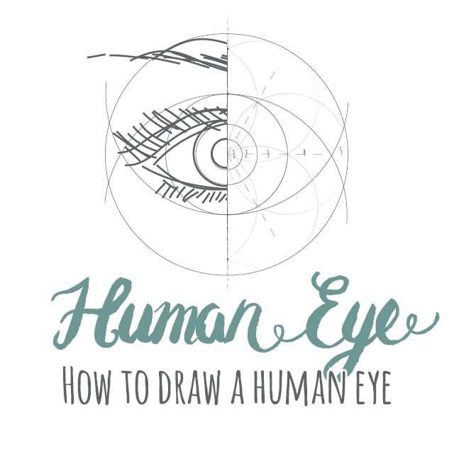 How to draw a Human Eye instructions link
