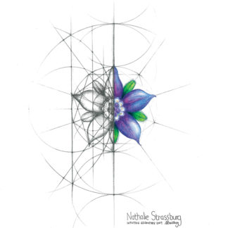 Nathalie Strassburg Intuitive Geometry Borage Flower Art