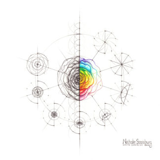 Nathalie Strassburg Intuitive Geometry Rose with steps Art