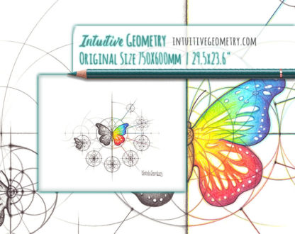 Nathalie Strassburg Intuitive Geometry Butterfly Art life size