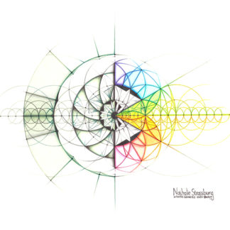 Nathalie Strassburg Intuitive Geometry Crystallography 24 Cell Geometry Art