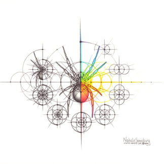 Nathalie Strassburg Intuitive Geometry Spider with steps Art