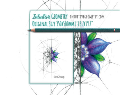 Nathalie Strassburg Intuitive Geometry Borage Flower Art life size