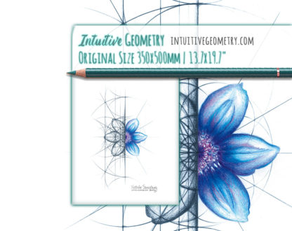Nathalie Strassburg Intuitive Geometry Clematis flower Art life size